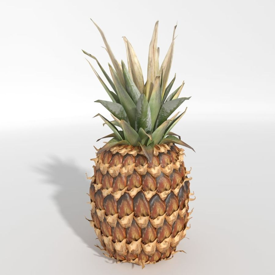 Realistic Pineapple royalty-free 3d model - Preview no. 1