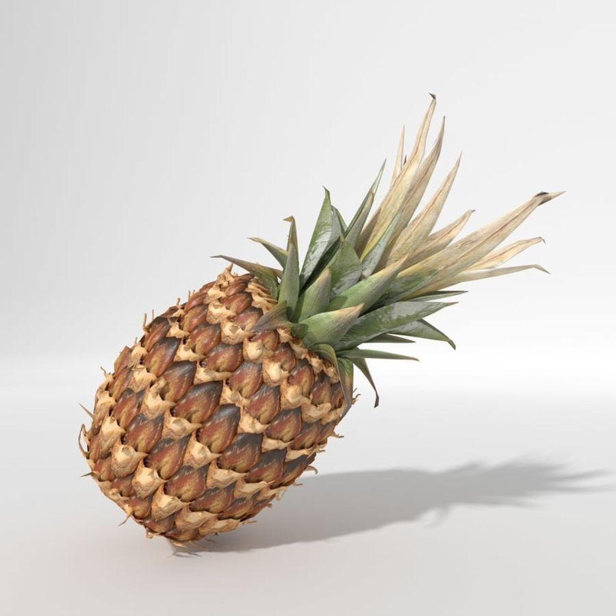 Realistic Pineapple royalty-free 3d model - Preview no. 2