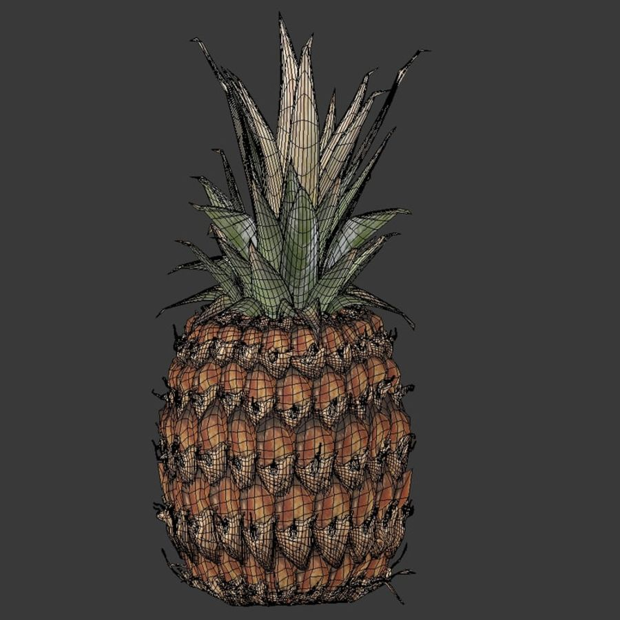 Realistic Pineapple royalty-free 3d model - Preview no. 6
