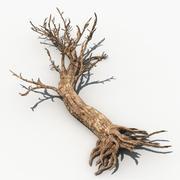 Dry Tree 01 3d model