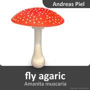 fly agaric 3d model