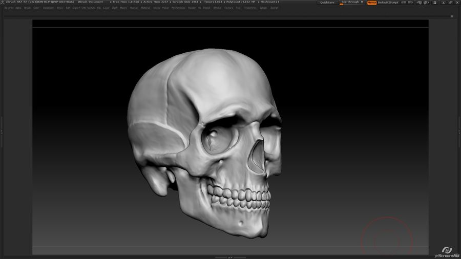 Skull royalty-free 3d model - Preview no. 4