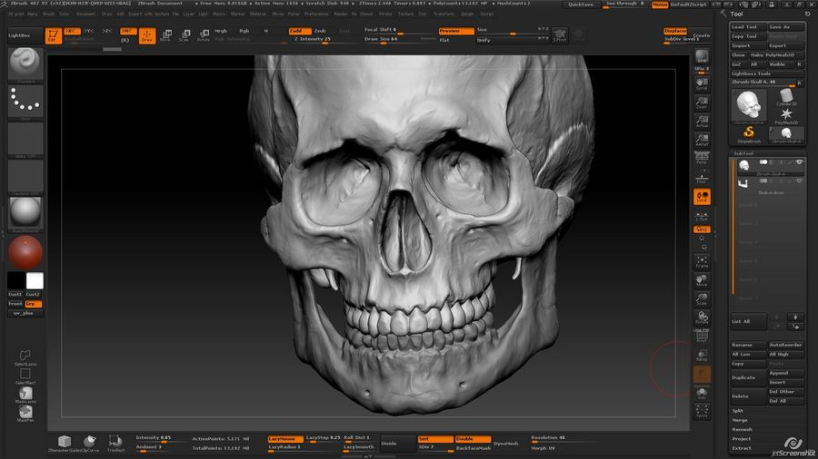 Skull new royalty-free 3d model - Preview no. 10
