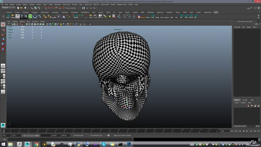 Skull new royalty-free 3d model - Preview no. 19