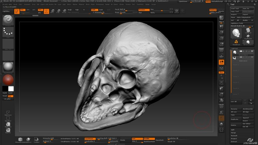 Skull new royalty-free 3d model - Preview no. 14
