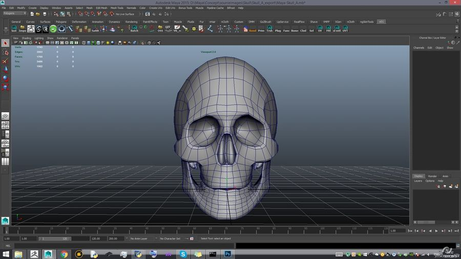 Skull new royalty-free 3d model - Preview no. 18