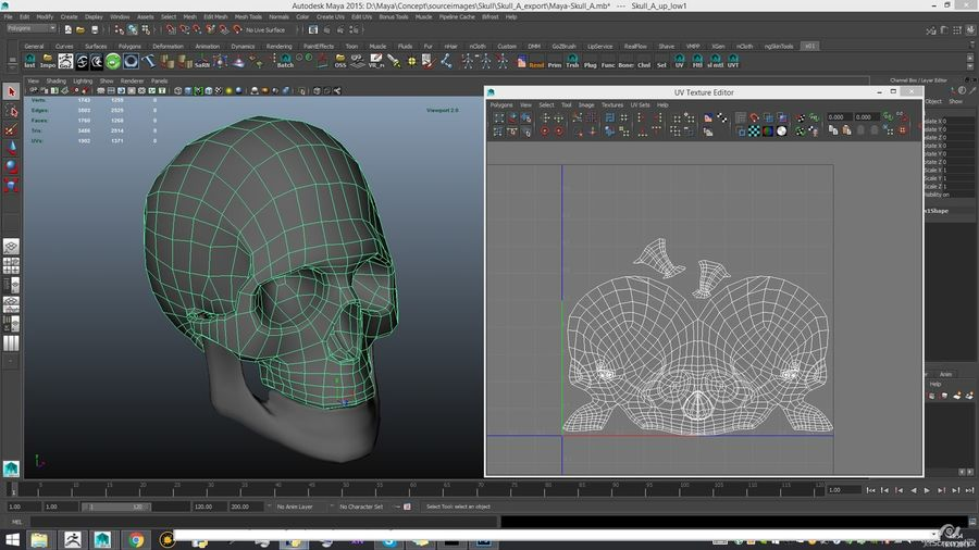 Skull new royalty-free 3d model - Preview no. 22