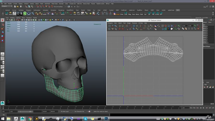 Skull new royalty-free 3d model - Preview no. 21