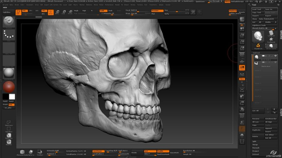 Skull new royalty-free 3d model - Preview no. 11