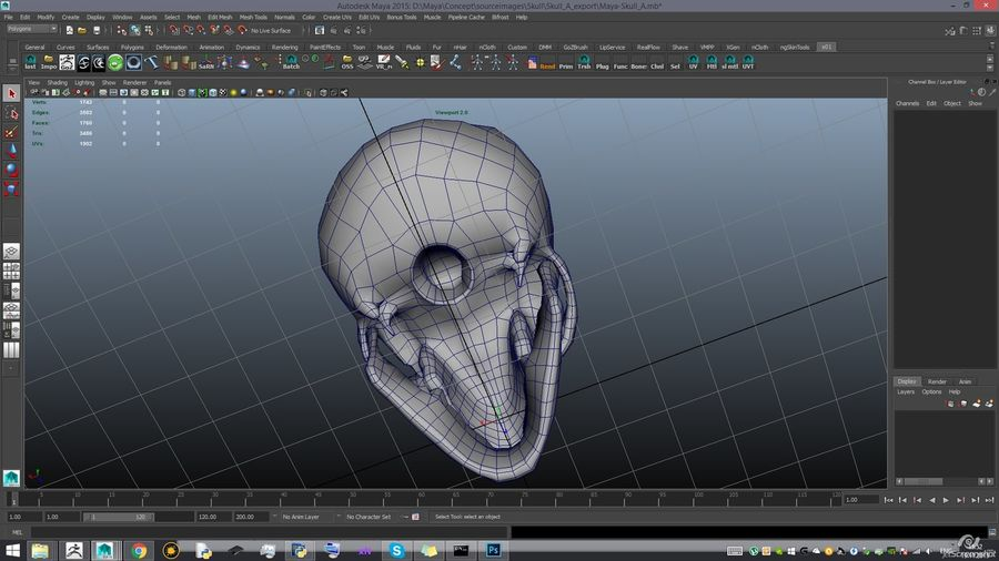 Skull new royalty-free 3d model - Preview no. 17
