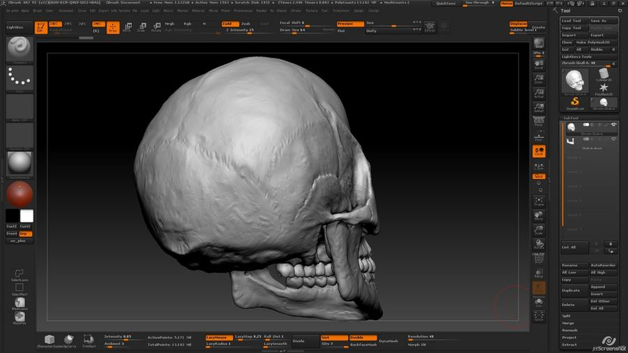 Skull new royalty-free 3d model - Preview no. 12