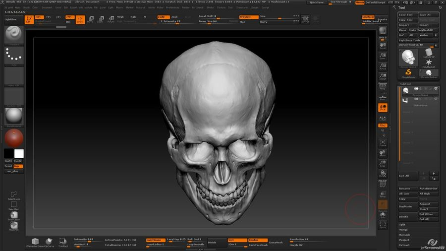 Skull new royalty-free 3d model - Preview no. 13