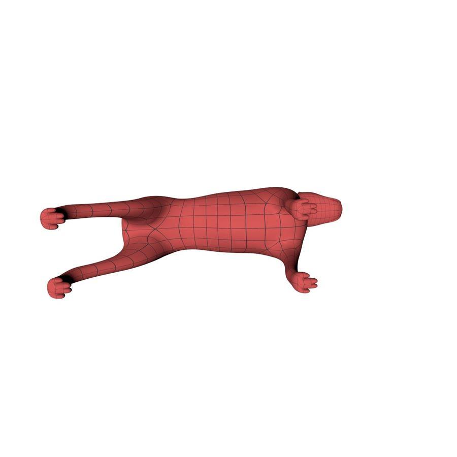 Boxer dog base mesh royalty-free 3d model - Preview no. 5