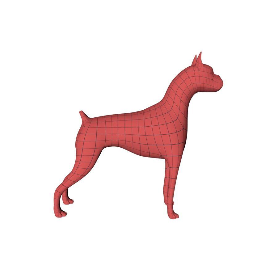 Boxer dog base mesh royalty-free 3d model - Preview no. 1