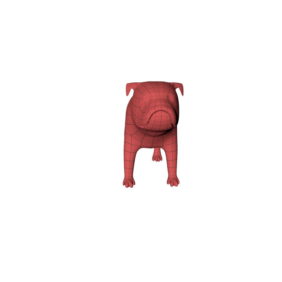 Bulldog base mesh royalty-free 3d model - Preview no. 3