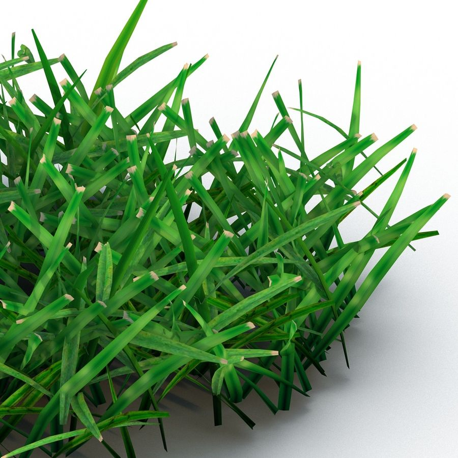 Grass 4 royalty-free 3d model - Preview no. 8