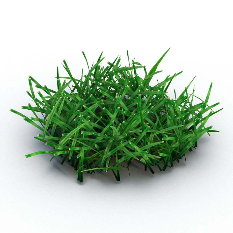 Grass 4 royalty-free 3d model - Preview no. 3