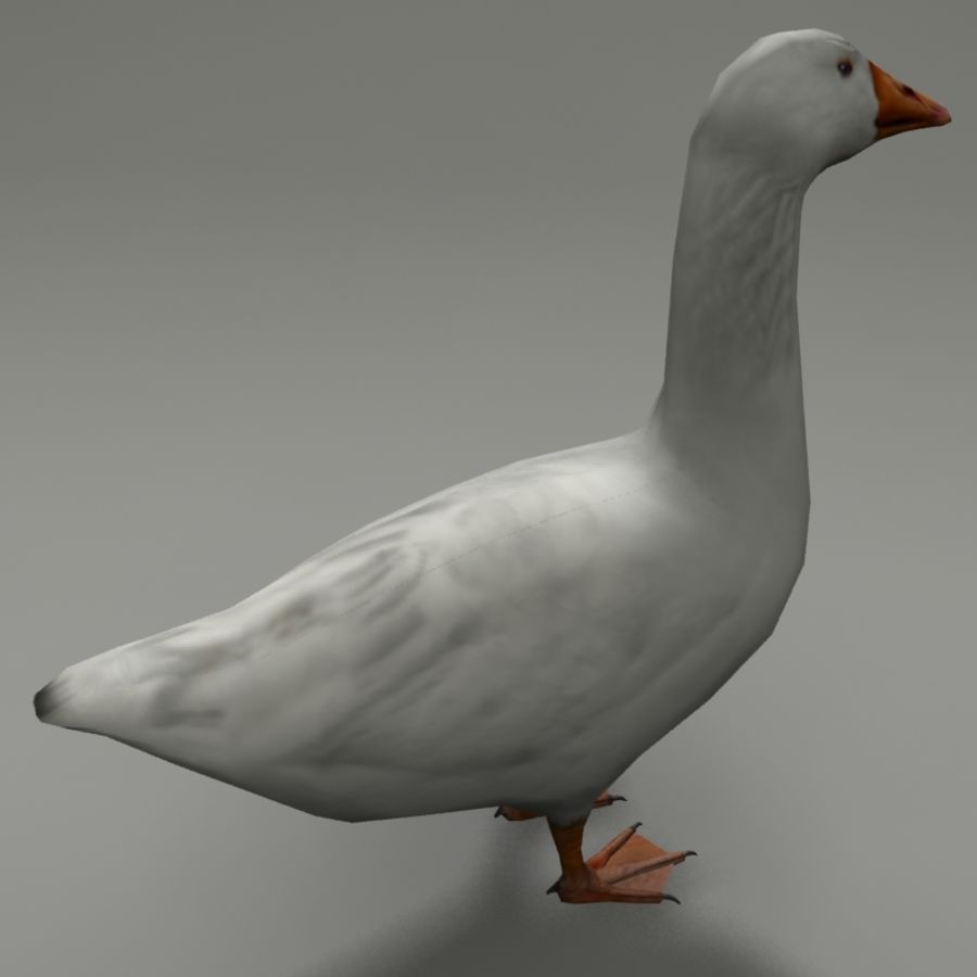 Goose royalty-free 3d model - Preview no. 3