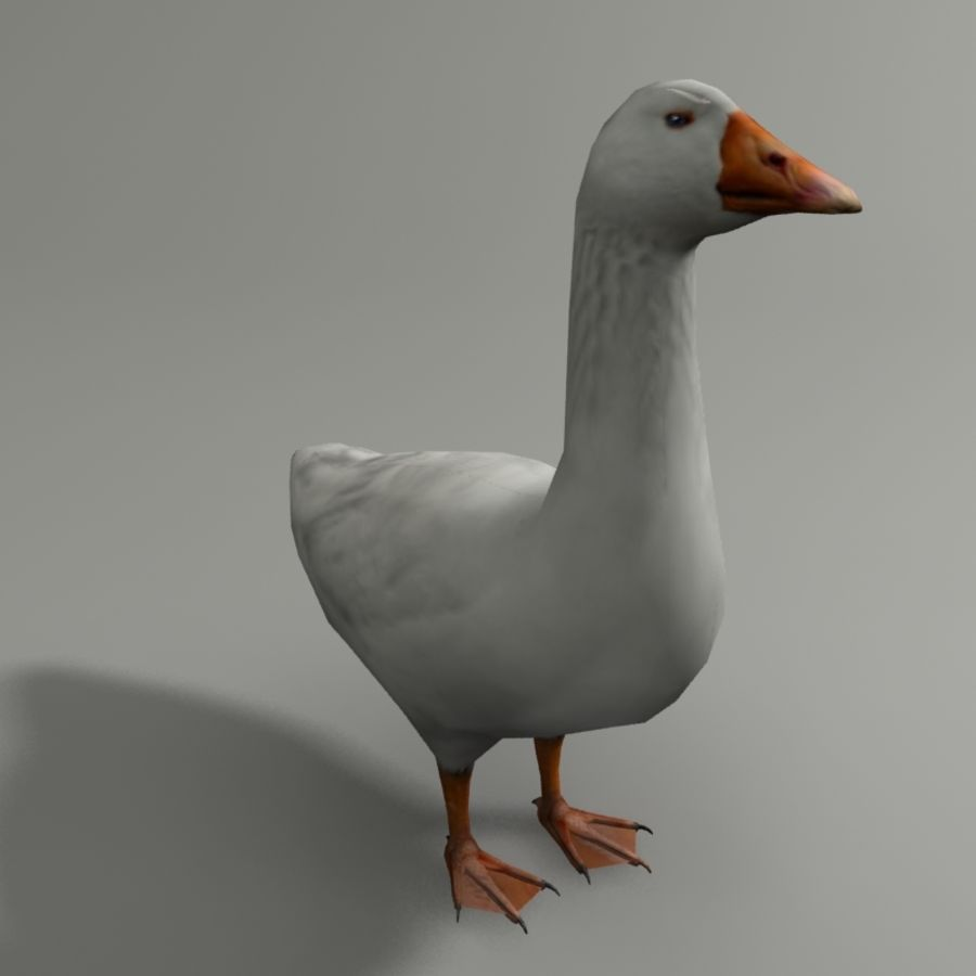 Goose royalty-free 3d model - Preview no. 4