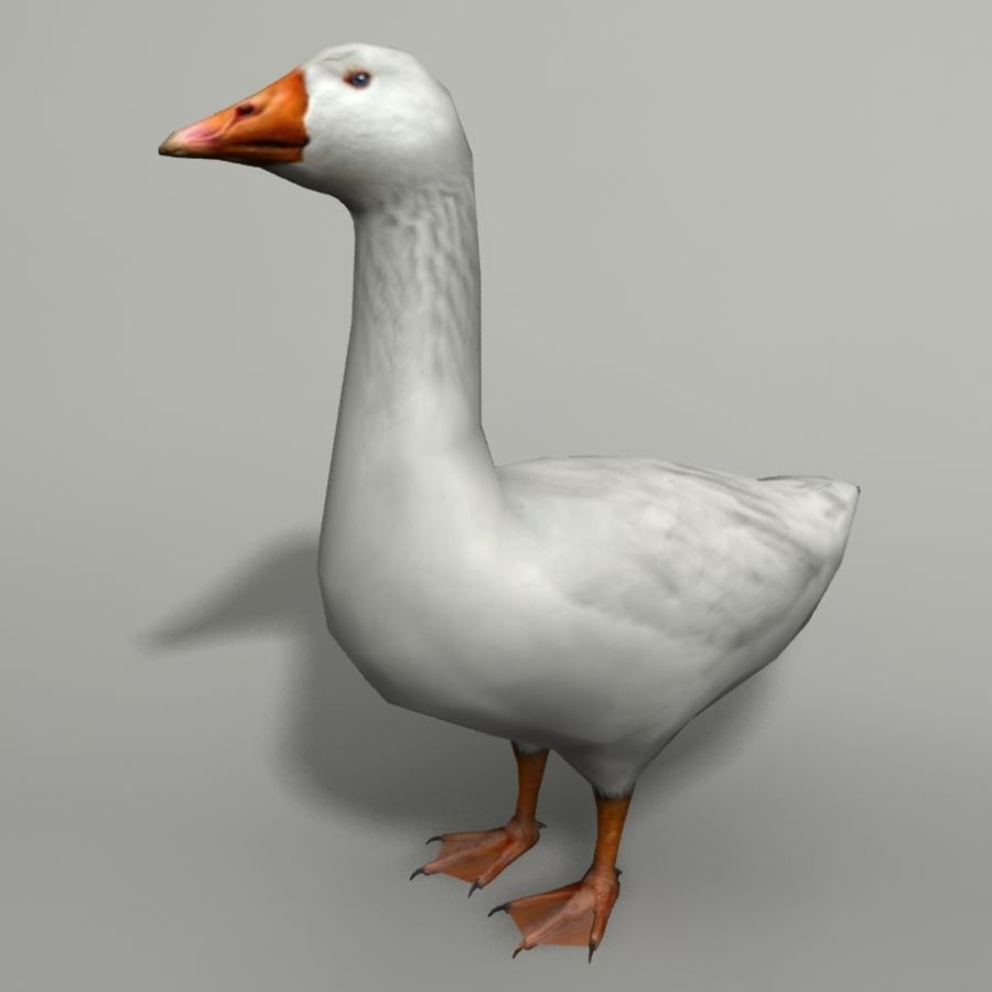 Goose royalty-free 3d model - Preview no. 1
