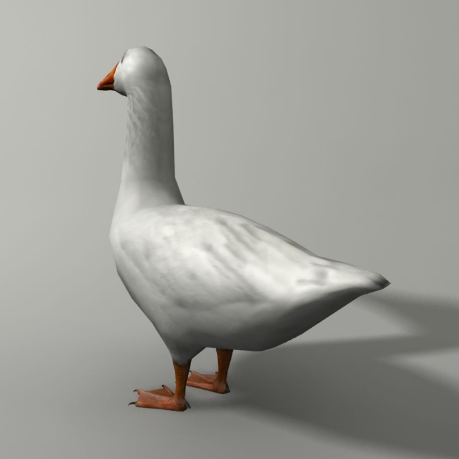 Goose royalty-free 3d model - Preview no. 2