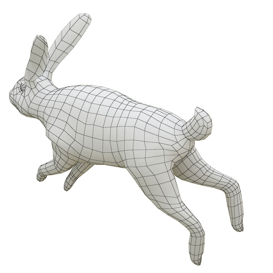 Hare_animated royalty-free 3d model - Preview no. 9