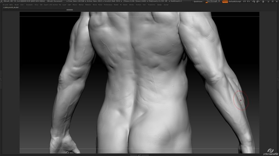 Anatomy advanced royalty-free 3d model - Preview no. 17