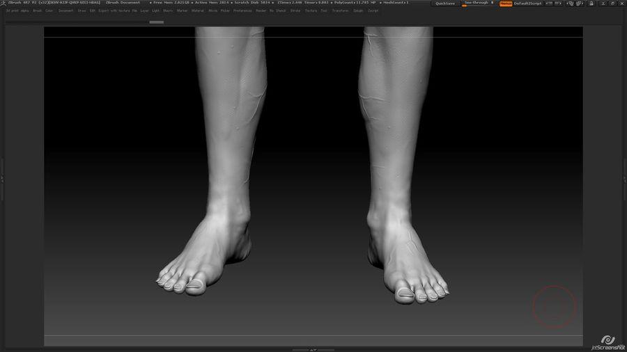 Anatomi avancerad royalty-free 3d model - Preview no. 26