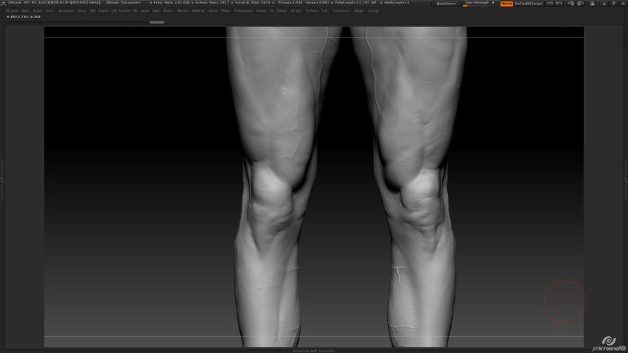 Anatomi avancerad royalty-free 3d model - Preview no. 24