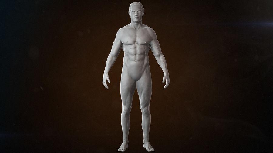 Anatomi avancerad royalty-free 3d model - Preview no. 6