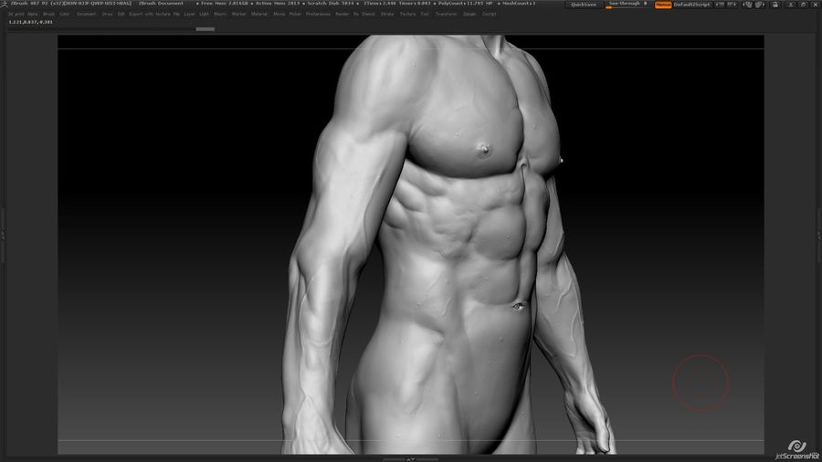 Anatomy advanced royalty-free 3d model - Preview no. 15