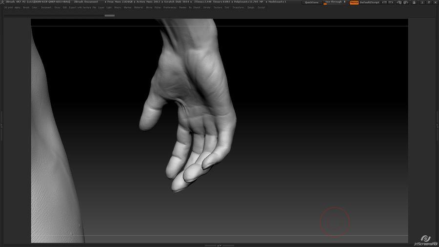 Anatomi avancerad royalty-free 3d model - Preview no. 23