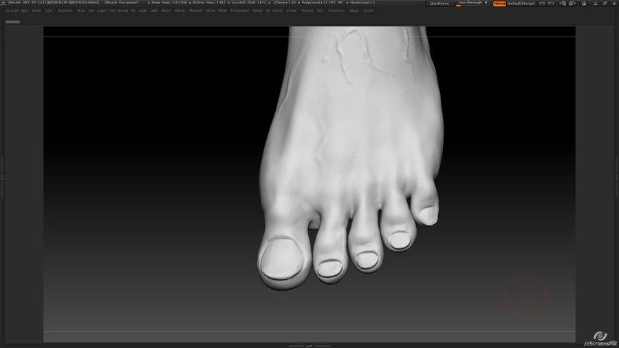Anatomi avancerad royalty-free 3d model - Preview no. 29