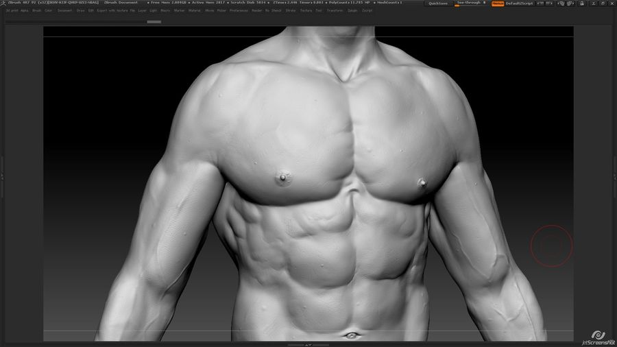 Anatomy advanced royalty-free 3d model - Preview no. 14
