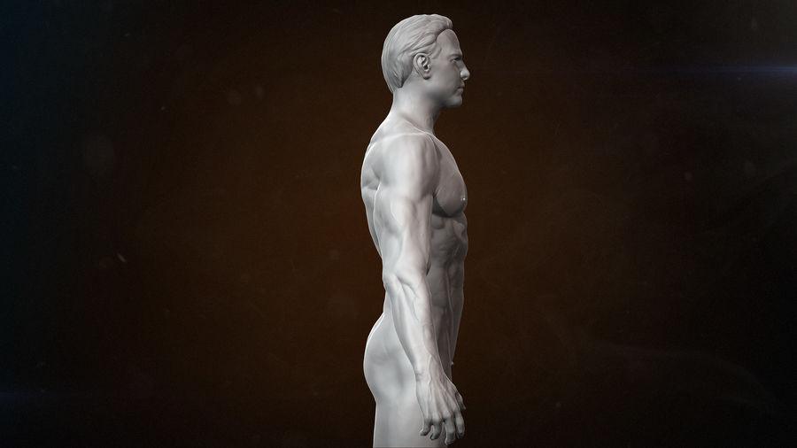 Anatomi avancerad royalty-free 3d model - Preview no. 3