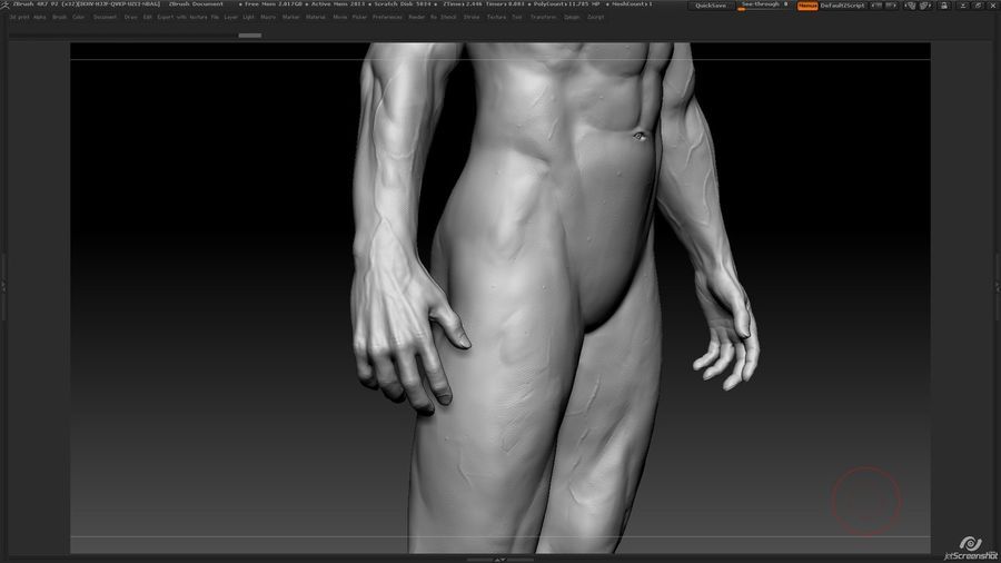 Anatomy advanced royalty-free 3d model - Preview no. 20