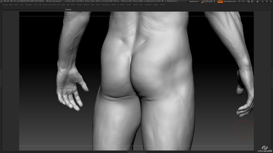 Anatomy advanced royalty-free 3d model - Preview no. 18