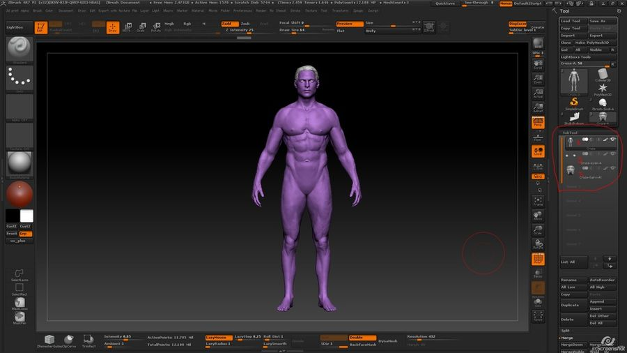 Anatomy advanced royalty-free 3d model - Preview no. 30