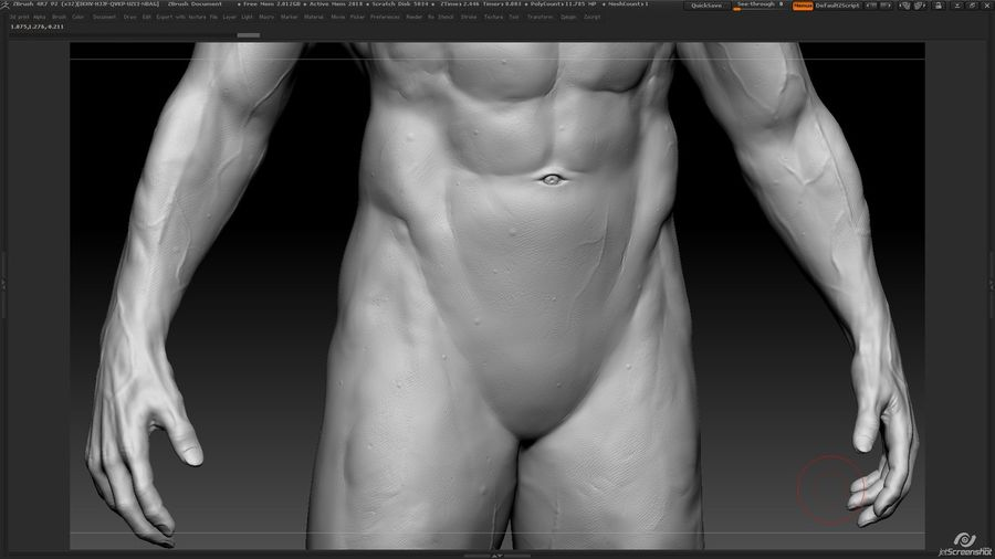 Anatomy advanced royalty-free 3d model - Preview no. 19