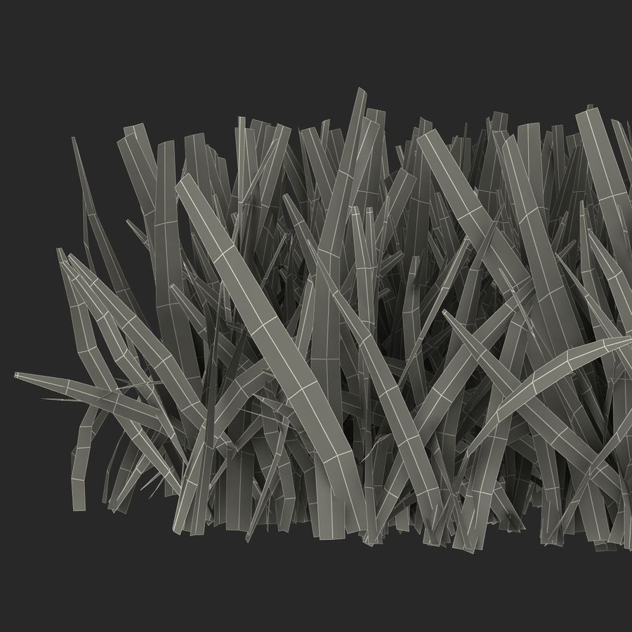 Grass 5 royalty-free 3d model - Preview no. 16