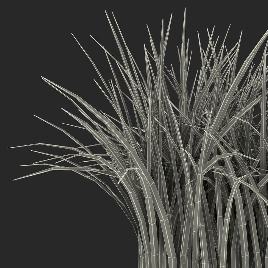Grass royalty-free 3d model - Preview no. 21