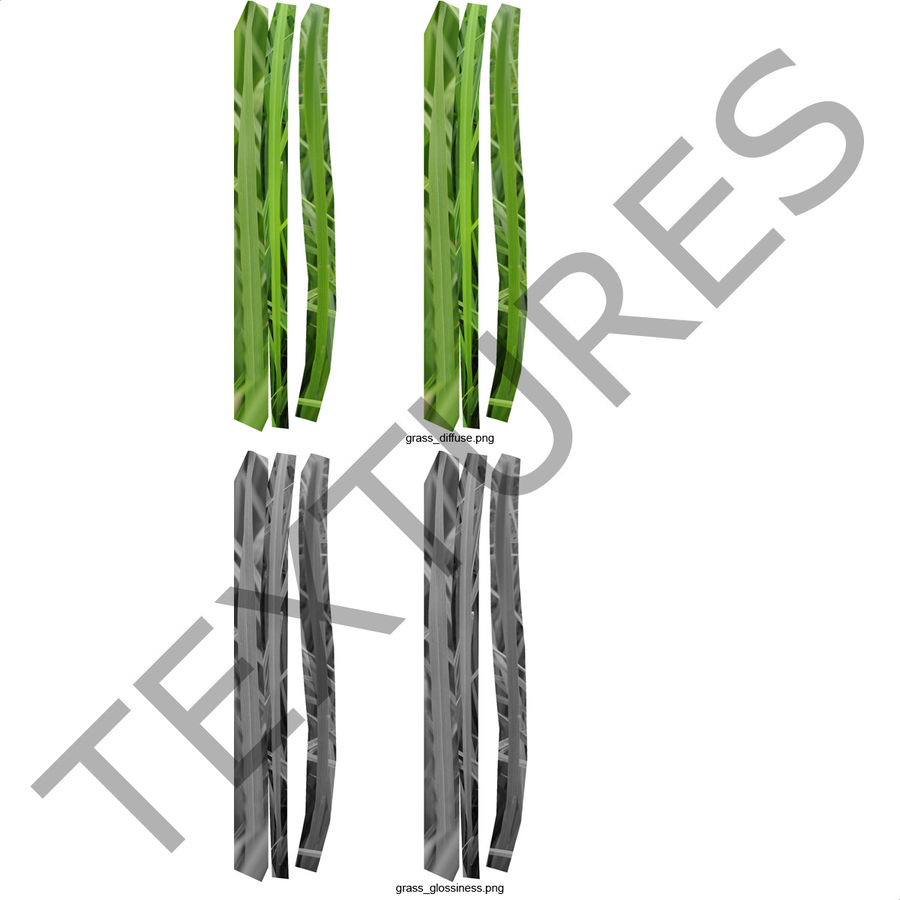 Grass royalty-free 3d model - Preview no. 15