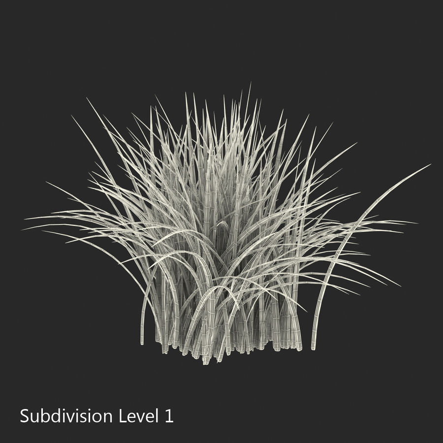 Grass royalty-free 3d model - Preview no. 13