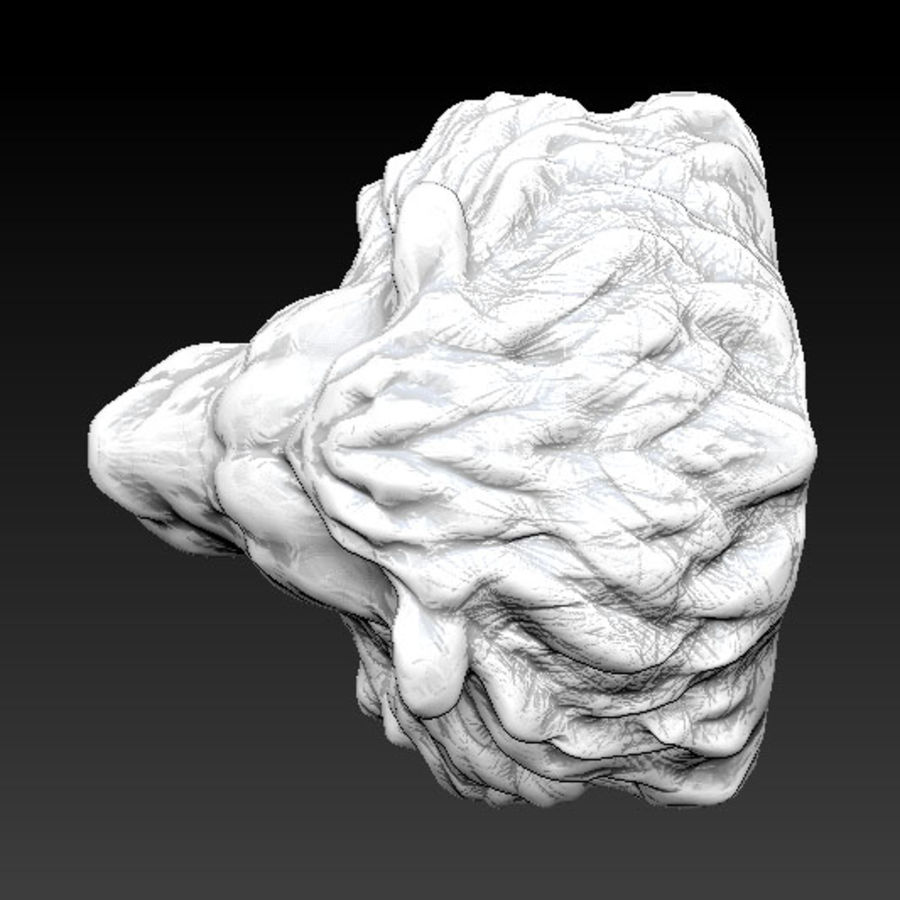 Lion head high royalty-free 3d model - Preview no. 5