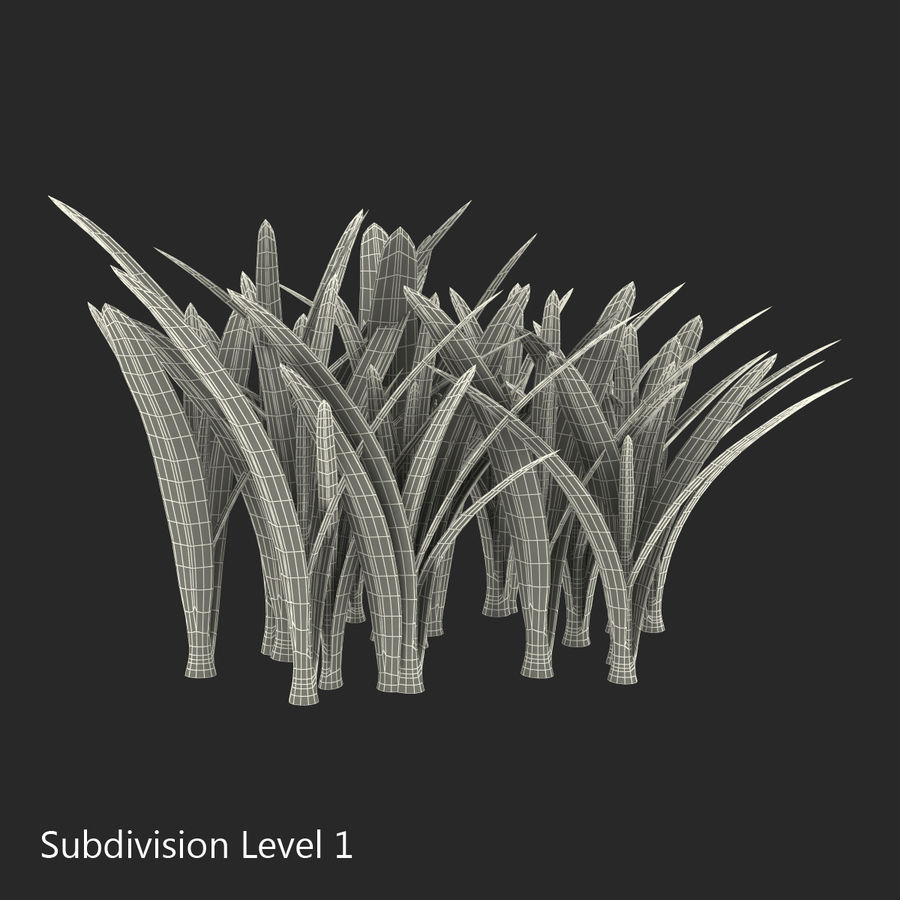 Grass 3 royalty-free 3d model - Preview no. 11