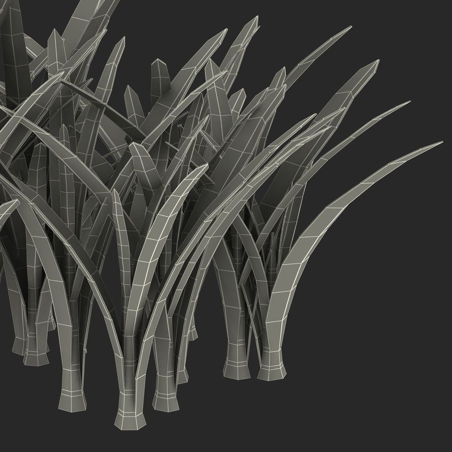 Grass 3 royalty-free 3d model - Preview no. 17