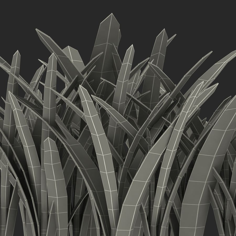 Grass 3 royalty-free 3d model - Preview no. 18