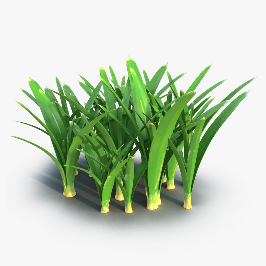 Grass 3 royalty-free 3d model - Preview no. 1