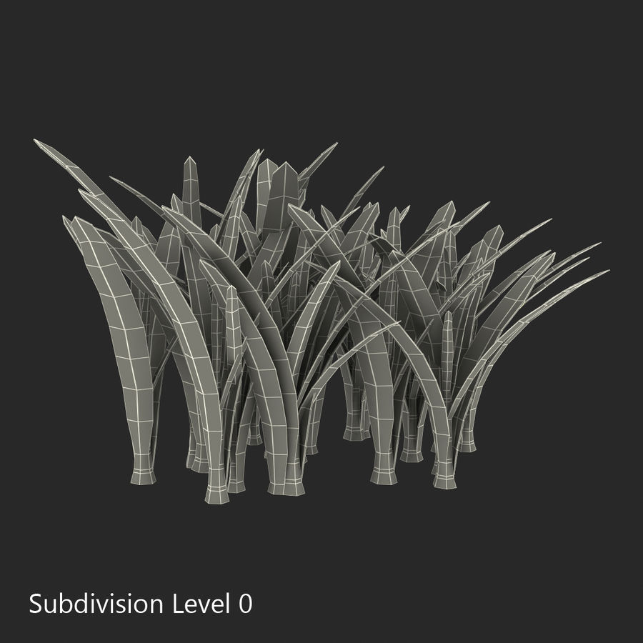 Grass 3 royalty-free 3d model - Preview no. 10