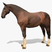 LowPoly Horse C (levande kastanj) 3d model